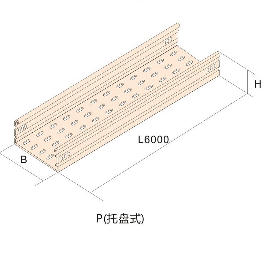 桥架三-大跨距桥架P(托盘式).jpg