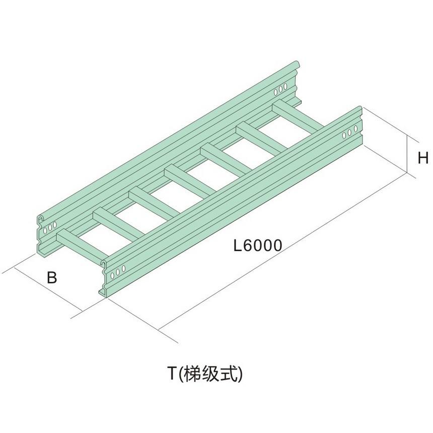 桥架三-大跨距桥架T(梯级式).jpg