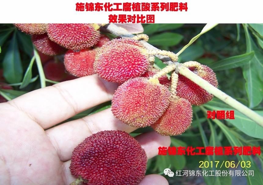 微信图片_20180620103228.jpg