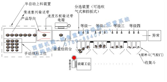 鲍鱼重量分级机-西部机械0760-85407761.jpg
