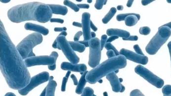 自体免疫细胞存储:您最佳的健康保障!
