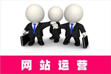 上海网站建设案例