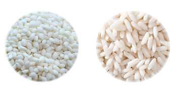 圆糯米与长糯米的区别