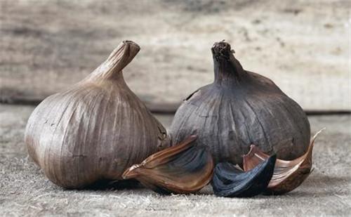黑蒜发酵设备的发展历程