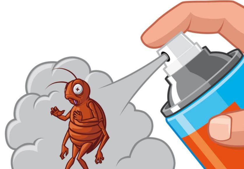 附图:使用杀虫剂