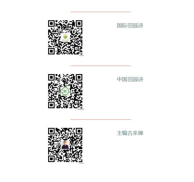 QQ图片20180612110512.png