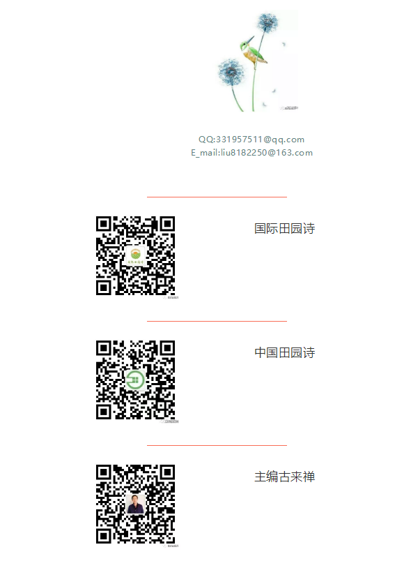 QQ图片20180612141629.png