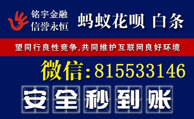 5002-1P9251556112Z.jpg
