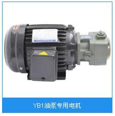 YB1油泵专用电机.jpg