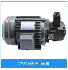 VP30油泵专用电机.jpg