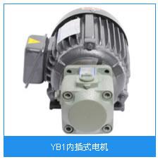 YB1内插式电机.jpg