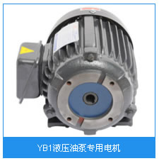 YB1液压油泵专用电机.jpg