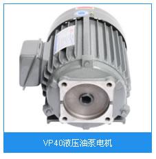 VP40液压油泵电机.jpg