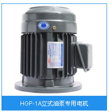 HGP-1A立式油泵专用电机.jpg