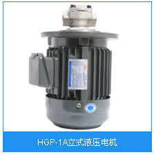 HGP-1A立式液压电机.jpg