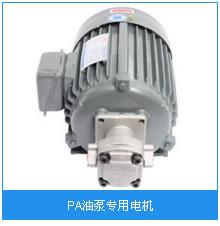 PA油泵专用电机.jpg