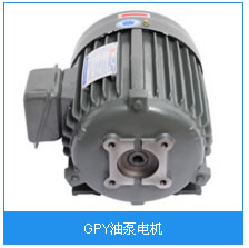 GPY油泵电机.jpg