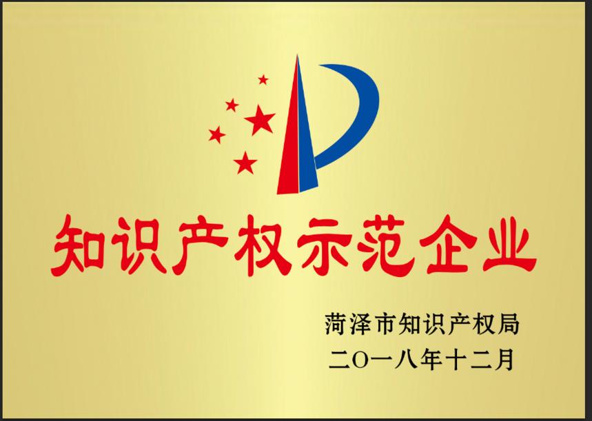 菏泽市知识产权示范企业.png
