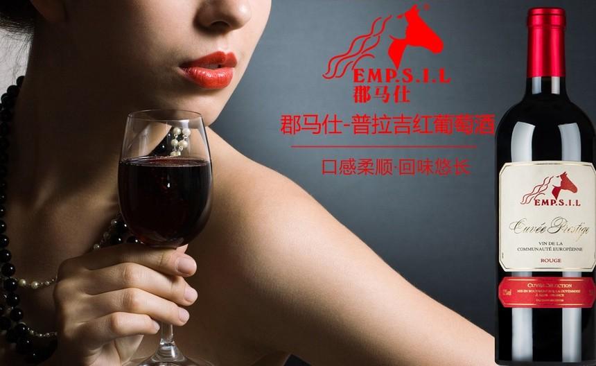 郡马仕深圳葡萄酒.jpg