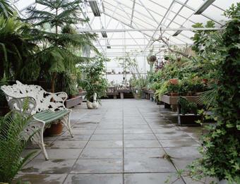 庭院温室.png