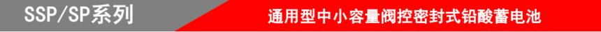 山东圣阳电源股份有限公司SSP/SP系列.png