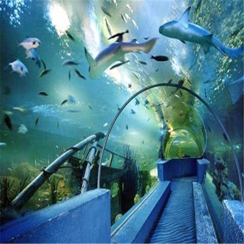 拱形海底隧道,透明亚克力隧道