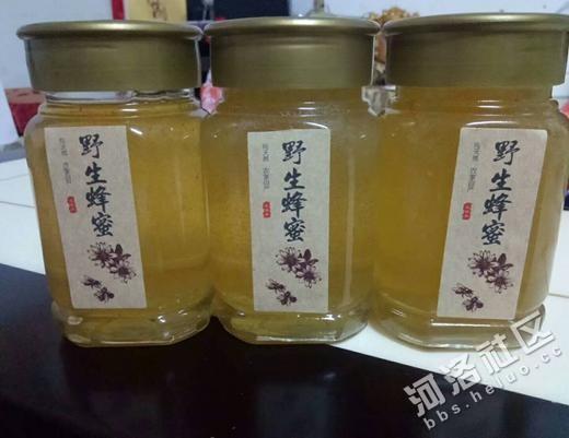 汝阳县电商精准扶贫:刘店镇岘山村养蜂第一人