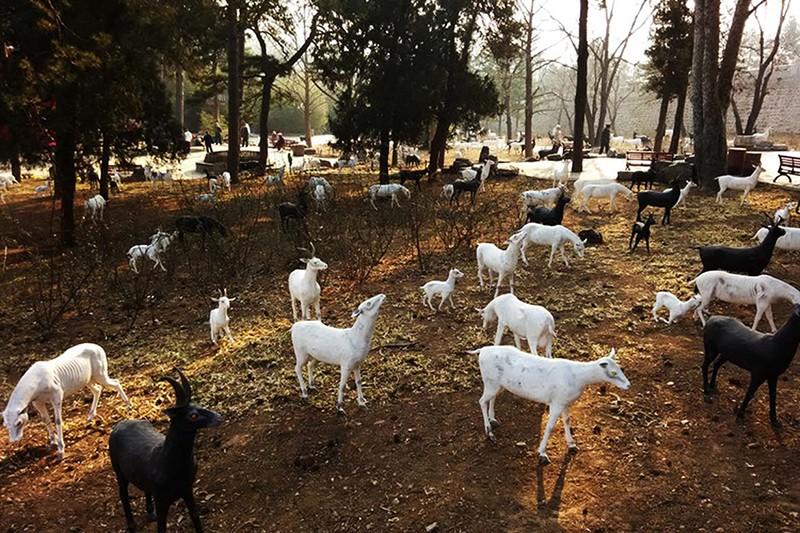 羊群 着色水泥动物雕像.jpg