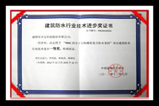深圳建筑防水行業技術進步獎_副本.jpg