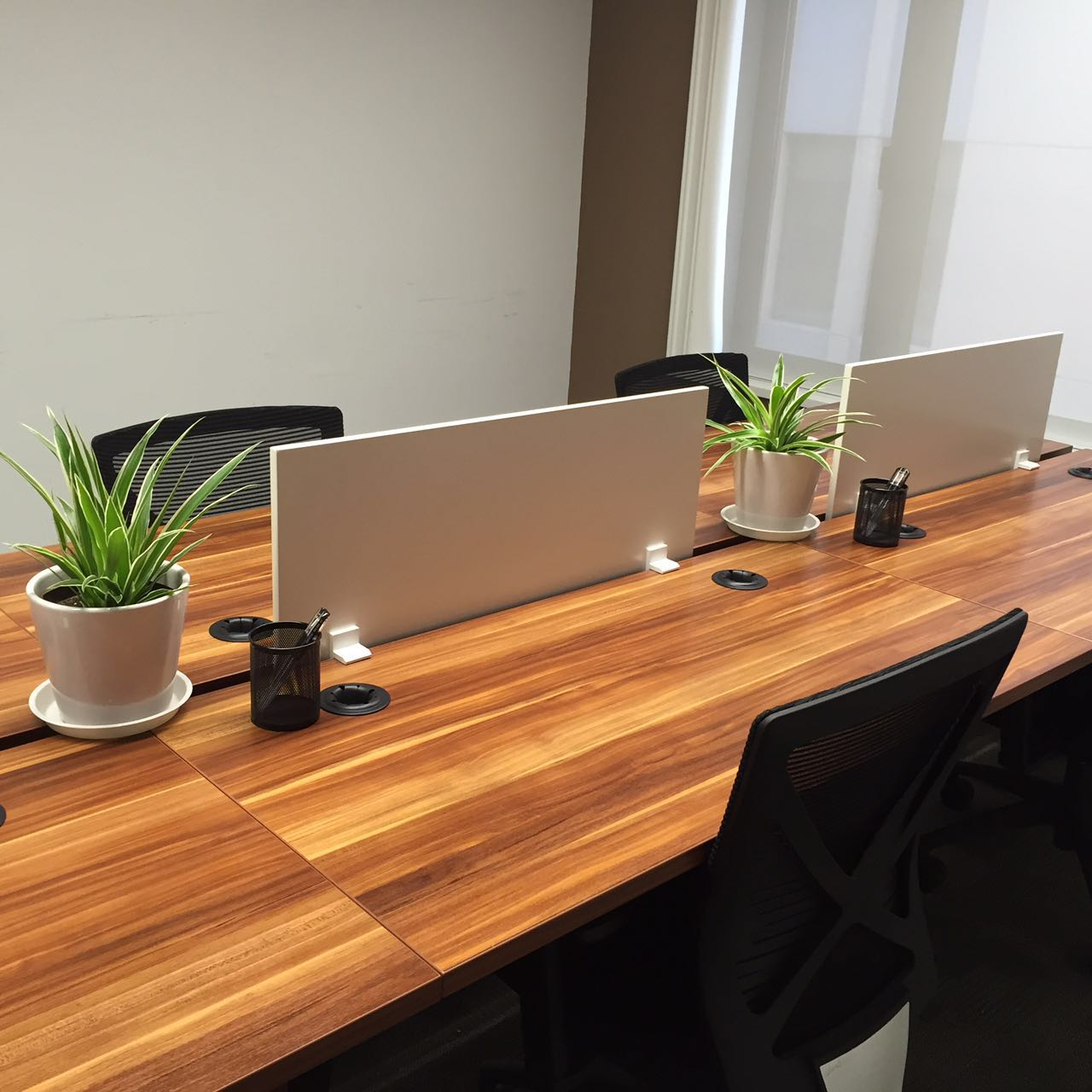 造绿坊-上海办公室绿植花卉租赁租摆平台-上海蓼华实业有限公司