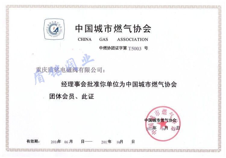 14燃氣協會證.jpg