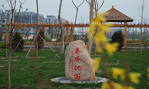 天津师范大学 拷贝.png