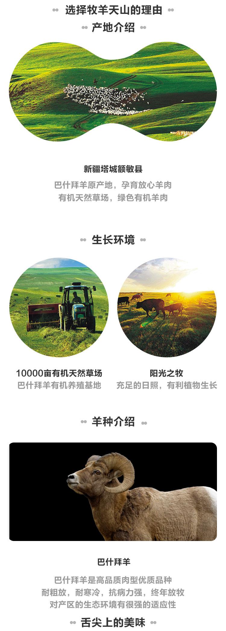 牧羊-包装_03.jpg