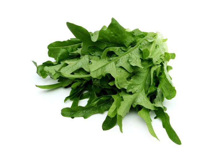 橡叶生菜700x525.jpg