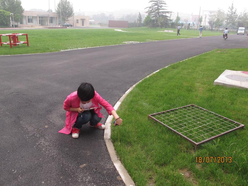 測定下凹式綠地及植被蓋度4.JPG