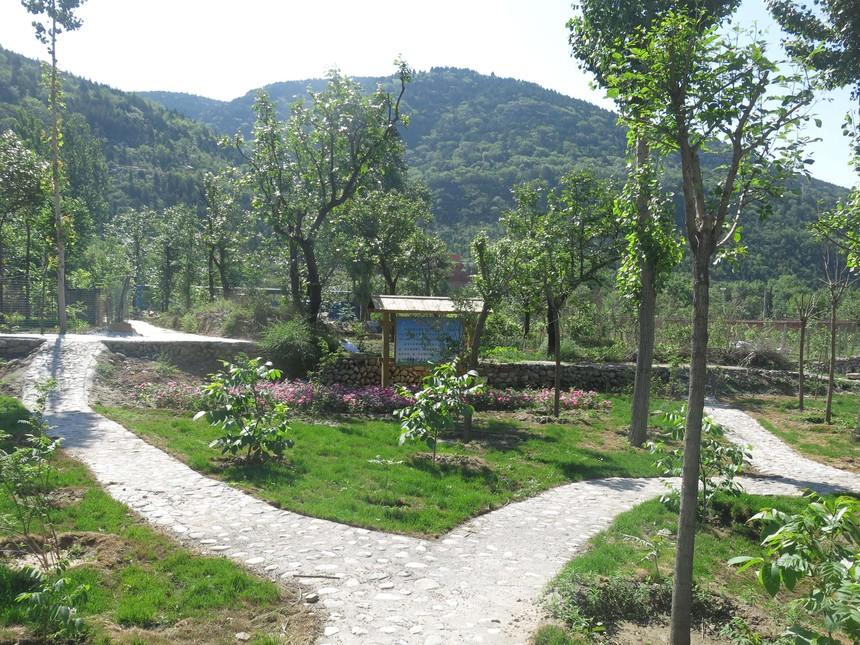 2015年房山區生態清潔小流域治理工程(大峪溝小流域)2.JPG