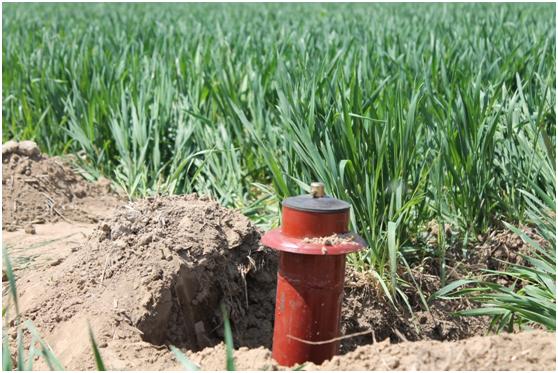 管道灌溉工程4.png