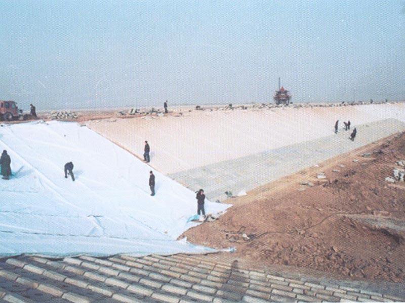 河道防渗土工布施工现场