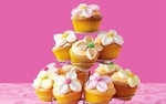 Delicious-cupcakes-flowers-pink-background_2560x1600
