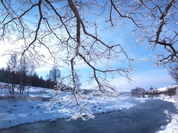 2016年1月9日拍摄,这处河段严冬从不封冻,故称之为不动河。三九严寒,滴水成冰,市境内所有大河小溪皆封冻,唯有此段河水热气腾腾,流水淙淙,多少年来从未结冰,令人称奇。水中还长着青青的水草;河面上云蒸霞蔚,河岸边雾凇晶莹,景色十分壮观。阿尔山不冻河 宋靖.jpg